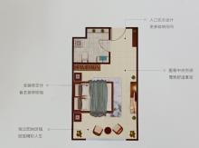 公寓户型1室1卫40—100㎡